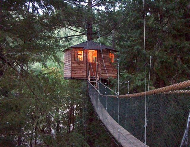 treehouse_hotel_9