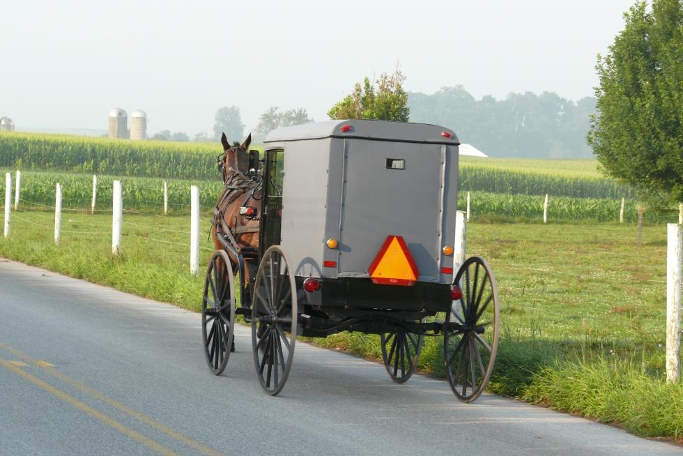Amish_buggy_2